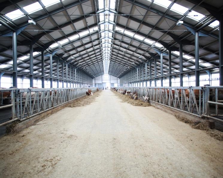«ЭкоНива» планирует на год приостановить инвестиции в строительство новых ферм