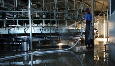 МСХА учит мыть доильное оборудование