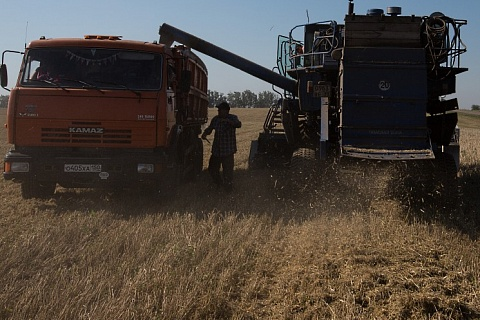 В июле агропроизводство выросло на 5,9%