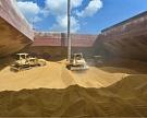 Экспорт зерна превысил прошлогодний уровень