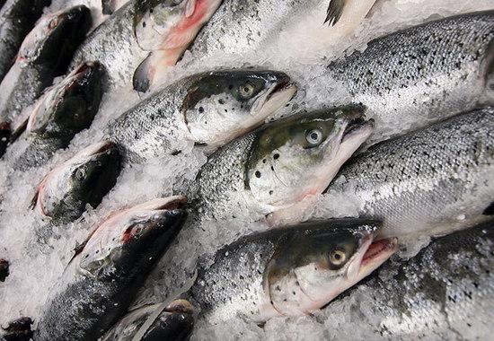 Рыбная продукция занимает 17% в агроэкспорте