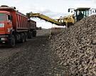 Рекордный урожай сахарной свеклы сократил использование импортного сахара-сырца