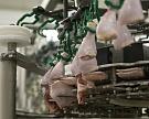 Производство скота и птицы на убой за полгода выросло на 6%