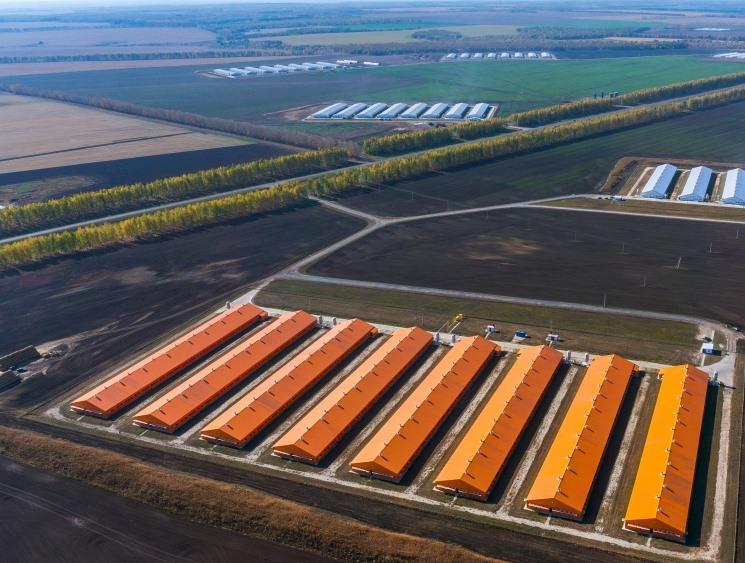 «Дамате» инвестирует в технологию ускоренной переработки помета