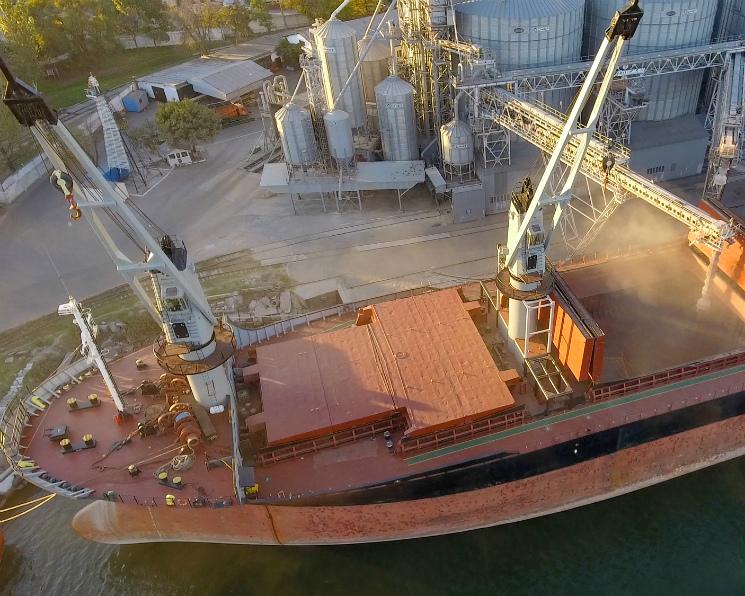 Потенциал упал— рекорды остались. В сезоне-2018/19 Россия вывезла 41,7 млн тонн зерна