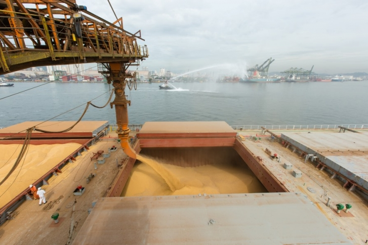 Топ-30 экспортеров зерна. Рынок разгрузили на53 млн тонн
