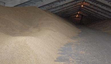 Выросли запасы зерновых