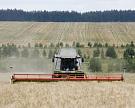 Гидрометцентр ожидает рекордного урожая зерна и масличных