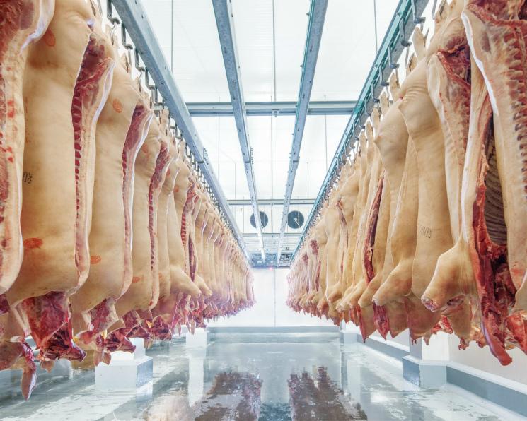 Лидеры мясной индустрии. Топ-25 крупнейших производителей мяса