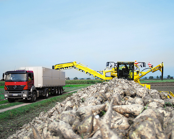 «Агросила» в этом году рассчитывает получить рекордный урожай сахарной свеклы— 1,2 млн т