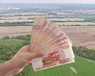 Выручка 27 крупнейших агрокомпаний составила 494 млрд рублей