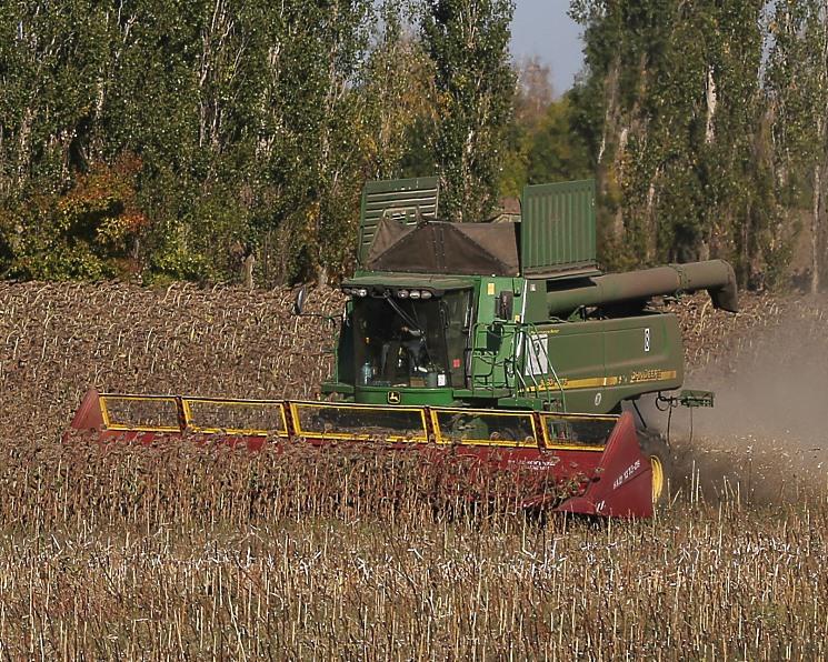 Производство основных масличных обновит рекорд