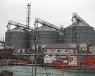 Турция ввела квоты нароссийские пшеницу имасло