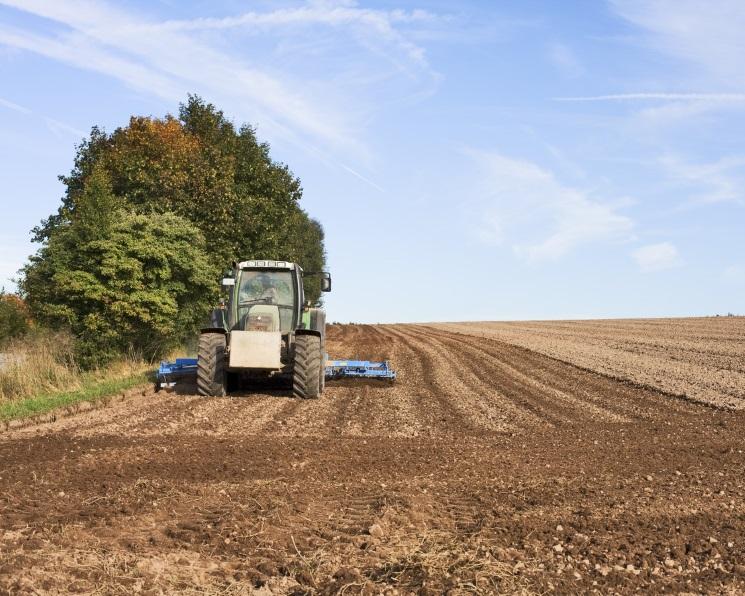 Озимые агрокультуры засеяны на94%