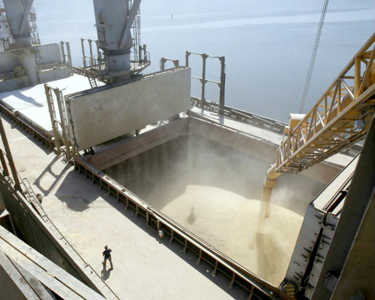 Экспорт зерна замедлится после Нового года