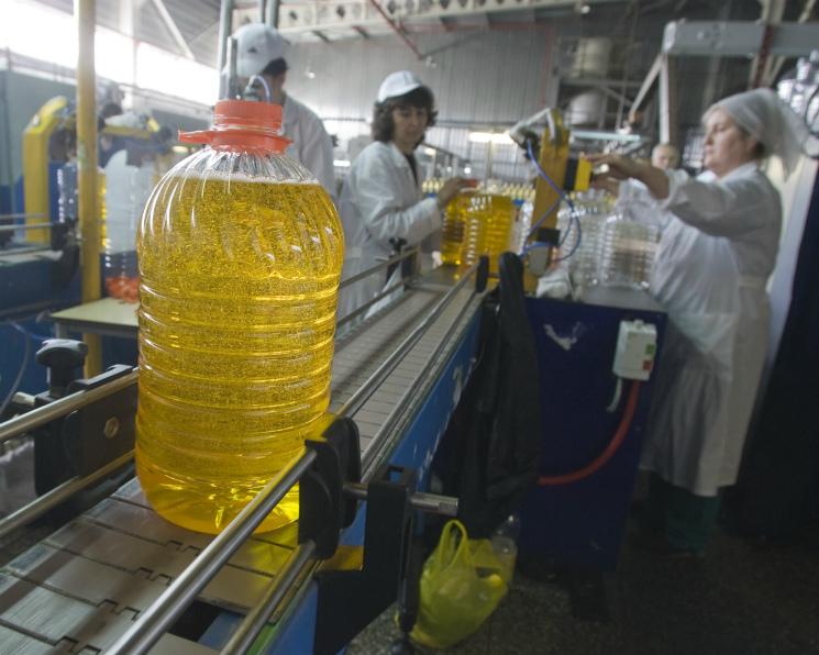Производство растительных масел обновляет рекорды