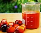Минсельхоз подготовил предложения по акцизу на пальмовое масло