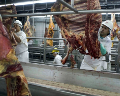 Импорт мяса снизится вдва раза