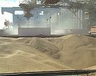 Экспорт зерна составил почти 36 млн тонн
