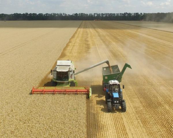 Трехзвенный подход: советы по эксплуатации бункеров-перегрузчиков зерна
