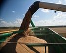 Сбор зерна вырос в 1,4 раза до 13,8 млн тонн