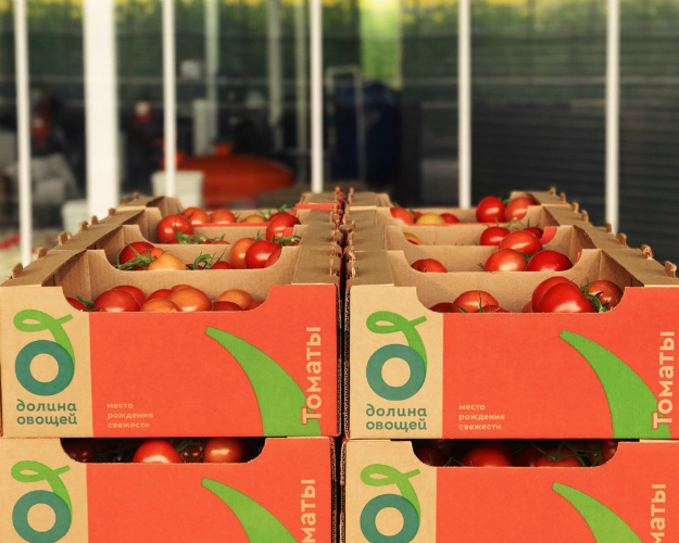 «Долина овощей» вложит 9 млрд рублей врасширение теплиц