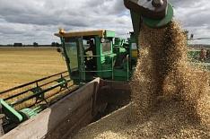 Производство сельхозпродукции сократится впервые с 2012 года