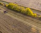 В России подросли цены на зерно