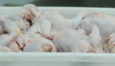Россия увеличила ввоз мяса птицы на35%