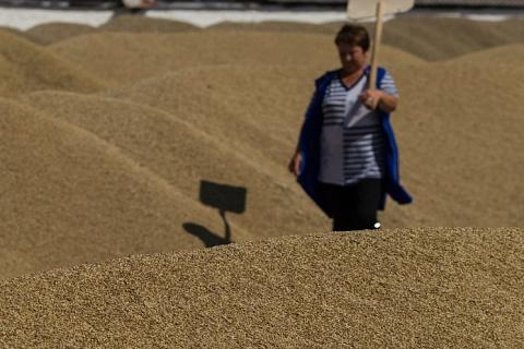 Минсельхоз сохраняет прогноз урожая зерна