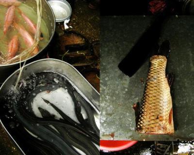 Россельхознадзор запретил ввоз рыбы изВьетнама свосьми предприятий