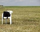 «Степь» купила 30 тысяч гектаров вРостовской области иСтаврополье
