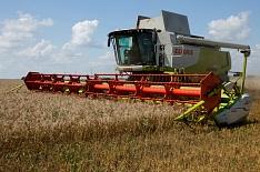 Claas на 38% увеличил продажи зерноуборочных комбайнов в России