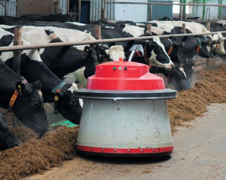 Конец ручного управления. Какие цифровые технологии внедряются на животноводческих предприятиях