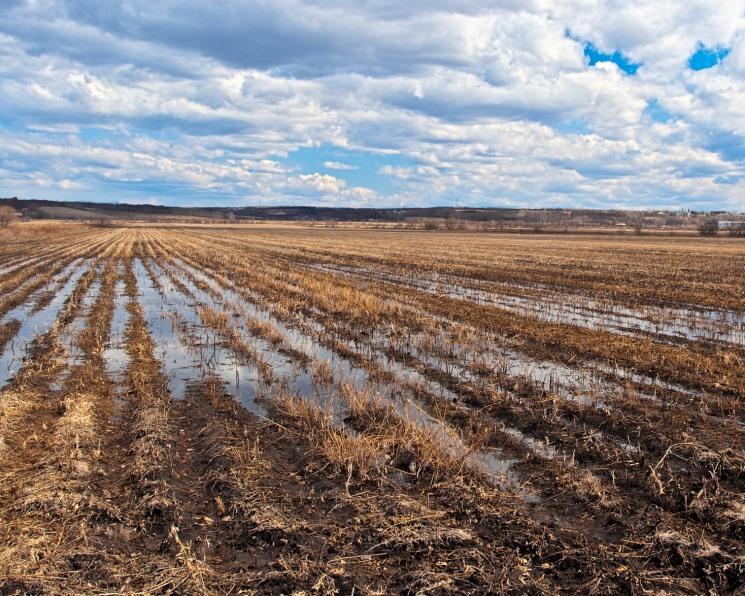Не давить. Как бороться с переуплотнением почвы