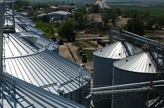 Из госфонда продано почти 500 тысяч тонн зерна