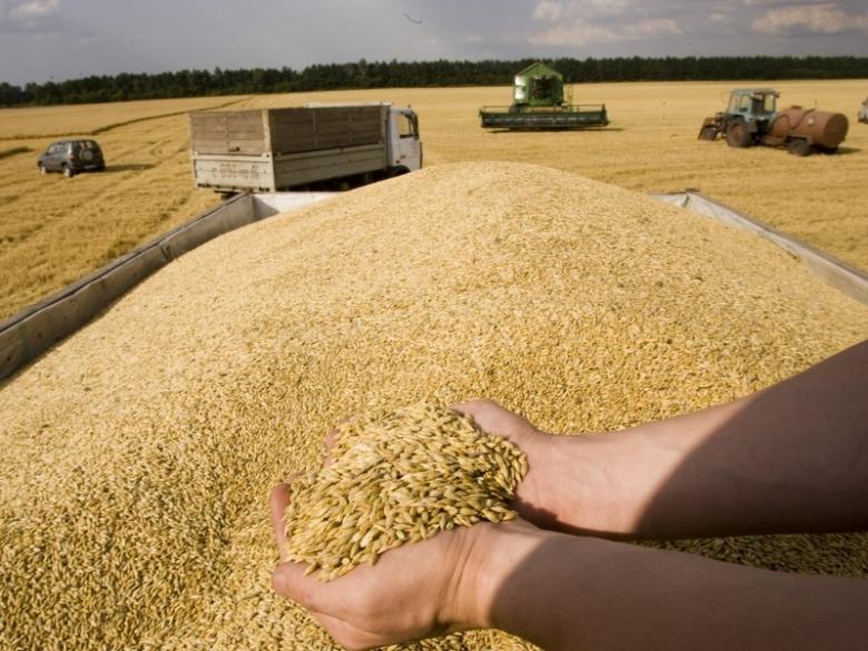 Урожаи зерна больше 100 млн тонн