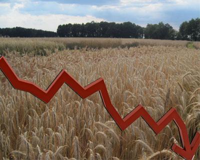 Россия в2013 году сократила площади земель сельхозназначения