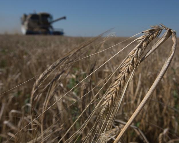 Кредитование сезонных полевых работ выросло на6%