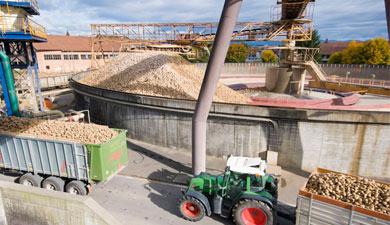 Субституты зерновых