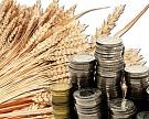 В текущем сельхозгоду может быть экспортировано 20 млн тонн зерна