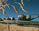 Рост агропроизводства вРоссии составит 5%