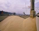 Минсельхоз США повысил прогноз по экспорту фуражного зерна из России и уменьшил оценку его запасов