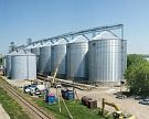 Зерновые интервенции для поддержания цен начнутся в течение недели