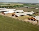 «ЭкоНиваАгро» открыла вВоронежской области восьмой животноводческий комплекс на2,8 тыс. коров