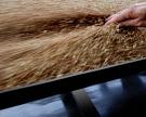 Цены на пшеницу продолжают расти