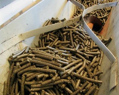 Сэкономить на кормах: безопасные способы снижения стоимости рациона