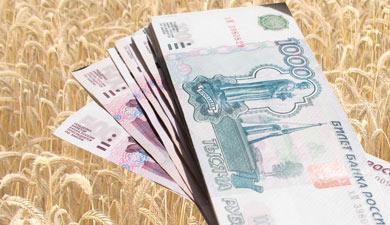 Финансирование агрогоспрограммы может быть снижено