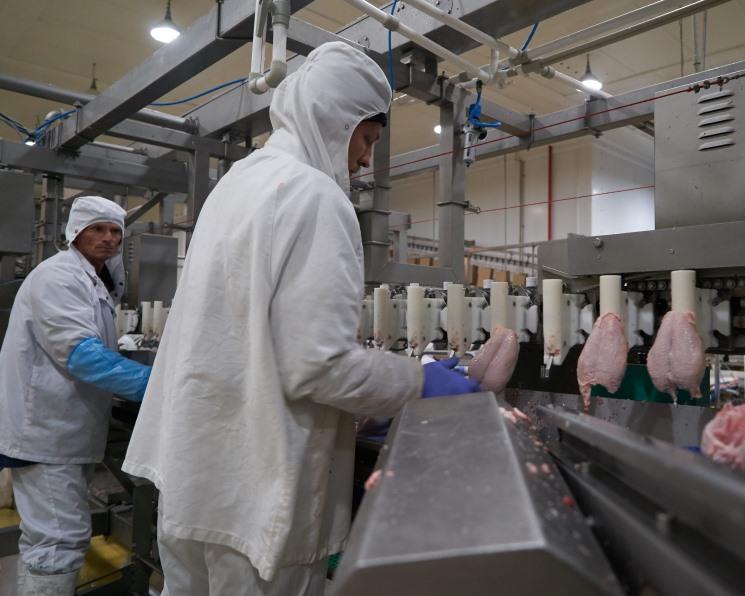 «Белая птица» консервирует производство