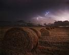 Минсельхоз прогнозирует сложную уборку урожая